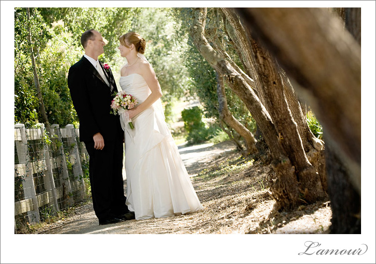 Wedding Portrait in California's Bay Area