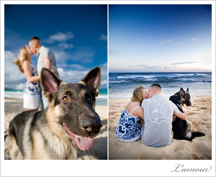Hawaii Beach Family Portrait Ideas http://www.lmprophoto.com/blog/index.php/2010/03/29/lamours-daily-shot-love-doggy-days/