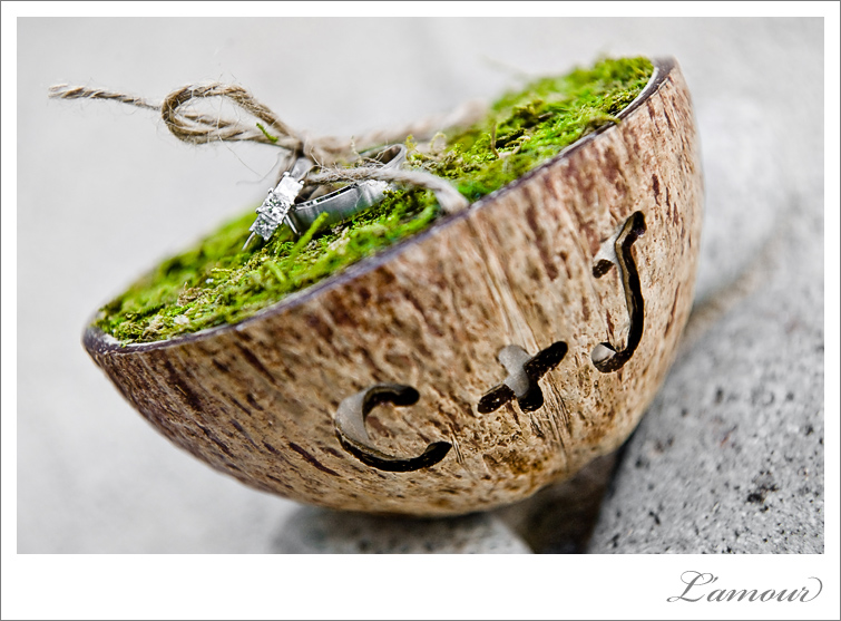 Hawaii Wedding DIY Coconut and moss Ring Pillow