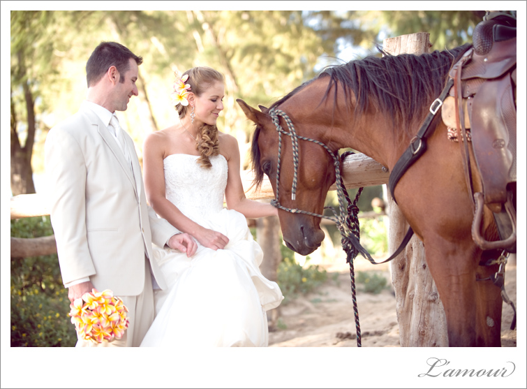 Bride and Groom With a Horse at their Turtle Bay Destination wedding in Hawaii