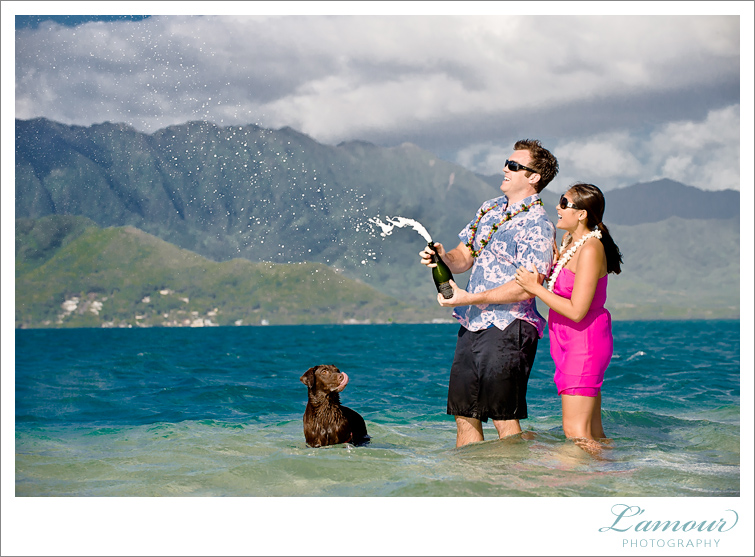 Hawaii Wedding Photography and Underwater Photos by Lamour