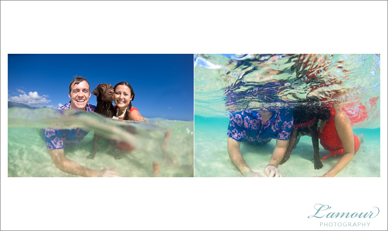 Underwater photos in hawaii weddings on oahu