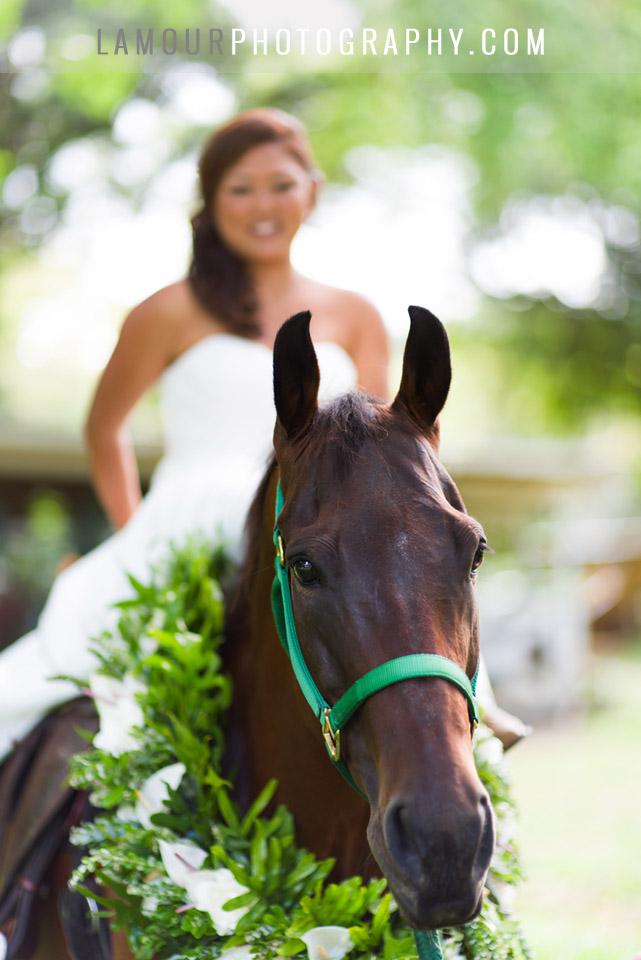 Kualoa ranch wedding photography on Oahu by L'Amour