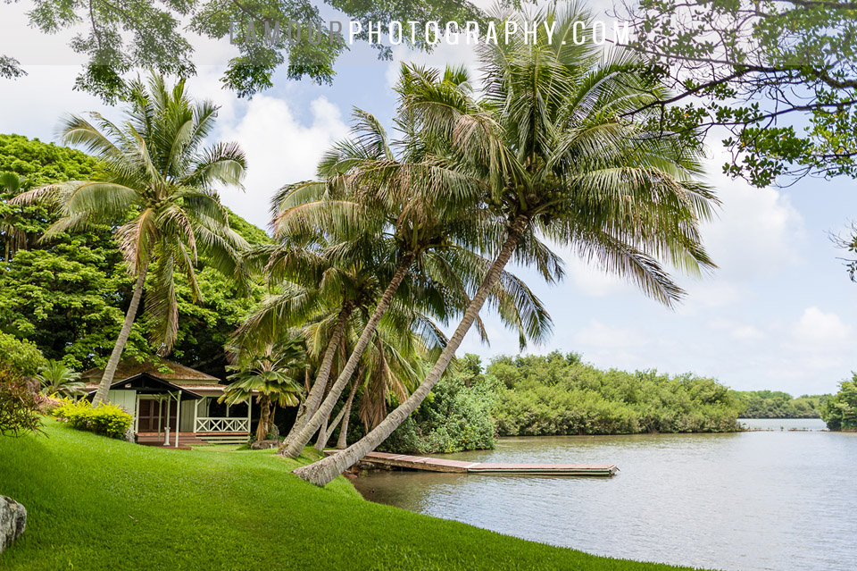 Kualoa Ranch | L\'Amour Photography
