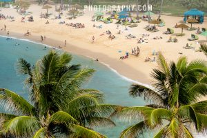 turtle bay resort wedding on oahu hawaii