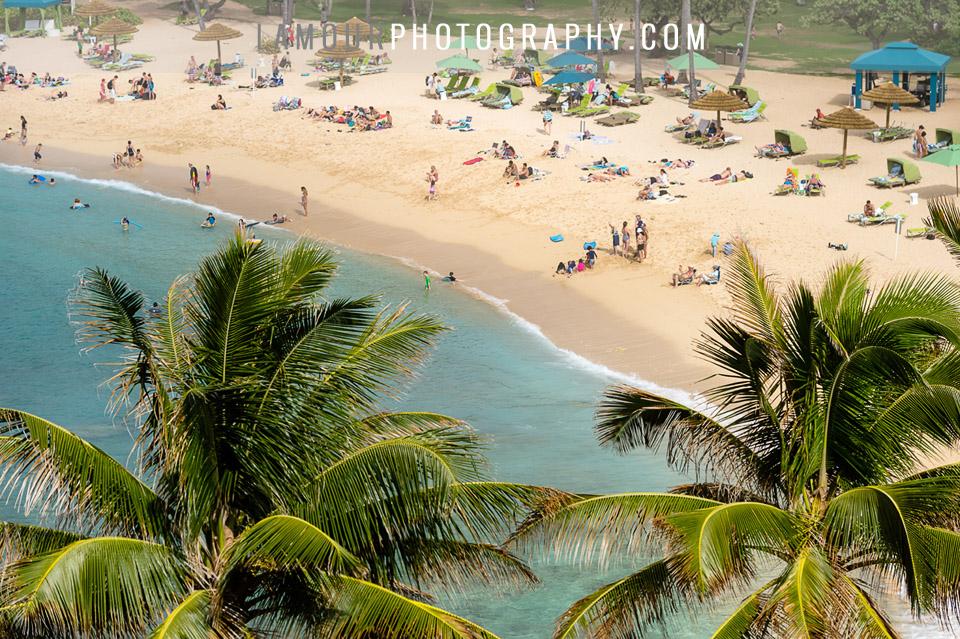 turtle bay resort wedding on oahu hawaii