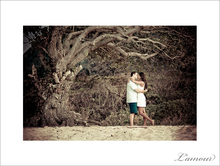Engagement Photos under a tree on North Shore Oahu