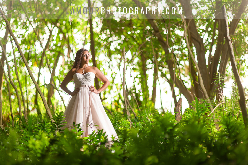 Hawaii wedding photography and video by lamour for a turtle bay wedding on oahu