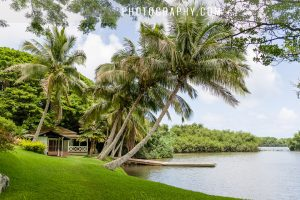 Kualoa ranch wedding ceremony by L'Amour at secret island