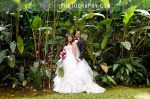 haiku gardens oahu wedding venue in hawaii