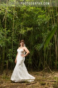hawaii wedding on oahu in bamboo forest for photos