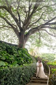Oahu wedding photography by L'amour at Kualoa Ranch